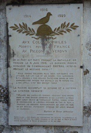 plaque_pigeon_fort_de_vaux-41c88