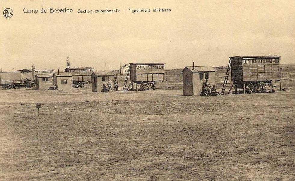 Camp-de-Beverloo-Belgique-Pigeonnier-militaire